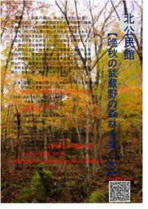 北公民館環境学習「自然散策講座」 @ 堀兼・上赤坂の森